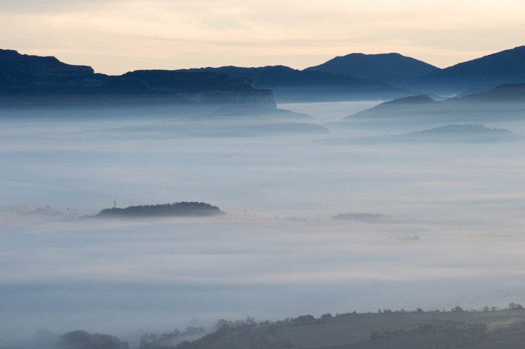 fog-2330095_1280