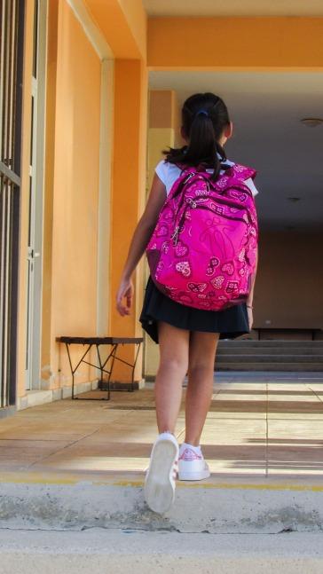student-1666118_1280