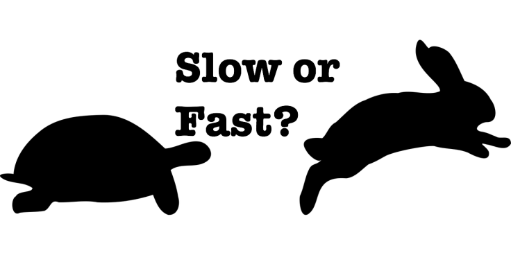 slow-fast